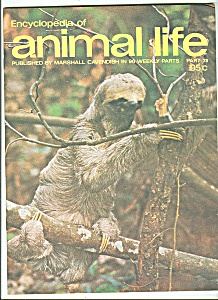 Encyclopedia of animal life -  Part 78    1974? (Image1)