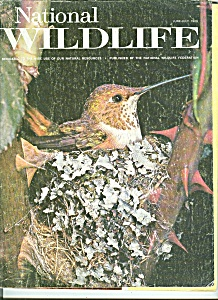 National Wildlife - June-july 1969