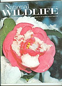 National Wildlife - February, March 1972