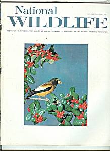 National Wildlife - December ,January 1971 (Image1)