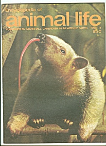 encyclopedia of animal life - Part 3    1974?? (Image1)