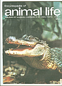 Encyclopedia of animal life -  Part 2  -  1974??? (Image1)