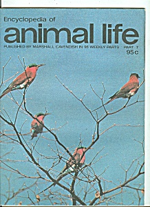Encyclopedia of animal life -  Part 7   - 1974??? (Image1)