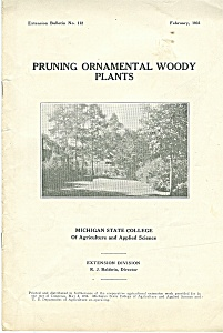 Pruning ornamental woody plants - february 1931 (Image1)