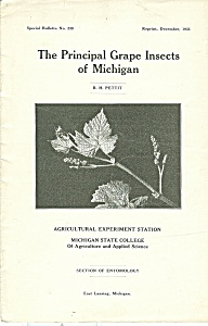 The  Principal Grape Insects of Michigan booklet - 12-1 (Image1)