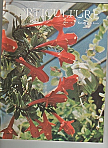 Horticulture Magazine - June 1973