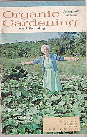 Organic Gardening - January 1967 (Image1)