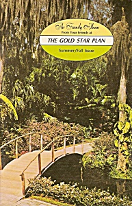 Family Album - The gold star plan (religious) summer fa (Image1)