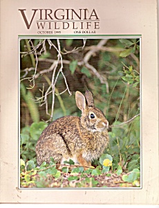 Virginia Wildlife -  October 1995 (Image1)