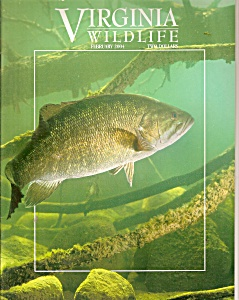 Virginia Wildlife -= February 2004 (Image1)
