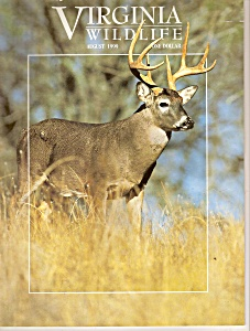 Virginia Wildlife - August 1999 (Image1)
