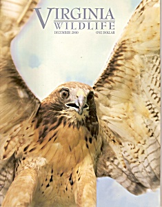 Virginia Wildlife - December 2000 (Image1)