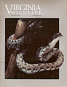 Virginia Wildlife - January 1990