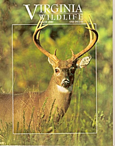 Virginia Wildlife -  August 2000 (Image1)