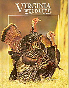 Virginia Wildlife - April 2000 (Image1)