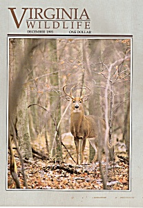 Virginia Wildlife -December 1993 (Image1)