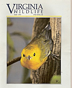 Virginia Wildlife - May 1993