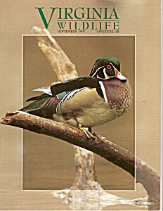 Virginia Wildlife -   September 1997 (Image1)