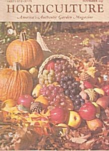 Horticulture magazine - November 1962 (Image1)