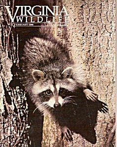 Virginia Wildlife - February 1986 (Image1)