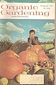 Organic Gardening -=  November 1968 (Image1)