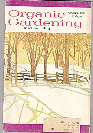 Oganic Gardening -  February 1967 (Image1)
