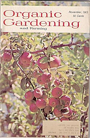Organic Gardening - November 1965 (Image1)