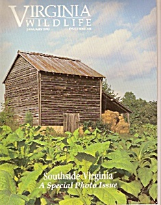 Virginia Wildlife -  January 1993 (Image1)