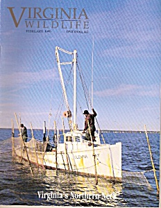 Virginia Wildlife magazine -  February 1995 (Image1)