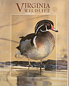 Virginia Wildlife magazine- October 1998 (Image1)