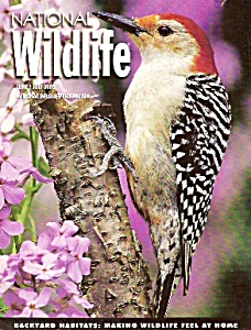 National Wildlife - June/July 2003 (Image1)