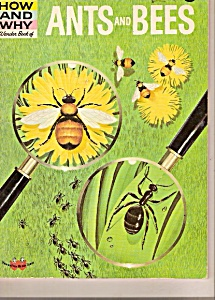 Ants and Bees wonder book - 1962 (Image1)