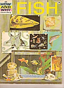 Fish wonder book -  1963 (Image1)