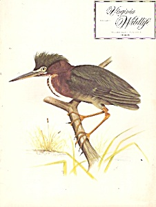 Viorginia Wildlife magazine- May 1974 (Image1)