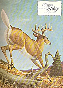 Virginia Wildlife - December 1970 (Image1)