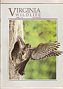 Virginia Wildlife - April 1994 (Image1)