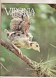 Virginia Wildlife - May 1989