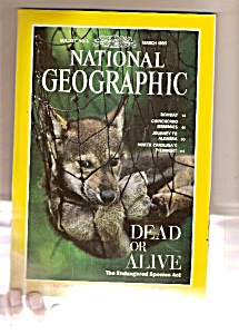 National Geographic -  March 1995 (Image1)