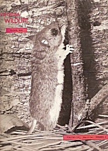 Virginia Wildlife -  March 1956 (Image1)
