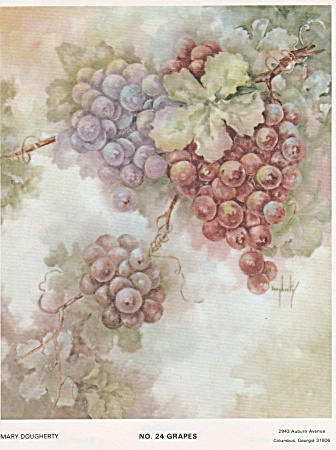 Vintage - Grape Study 24 - Mary Dougherty - 1976