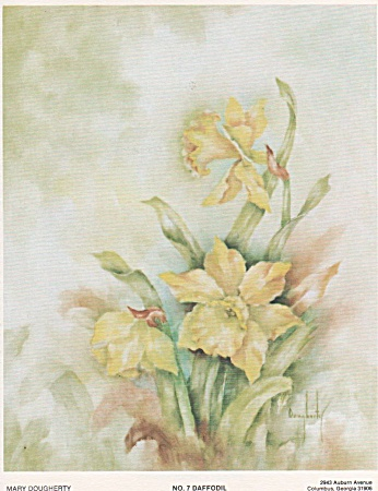 Daffodils - Mary Dougherty - Study 7 - 1976 - Oop