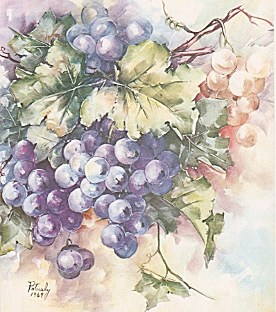 Mary Patusky - Grapes - Study 10 - Vintage - 1969