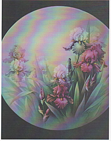 Scintillation Iris - By San Do - Original