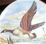 Click here to enlarge image and see more about item 091903LFD: Canadian Geese Porcelain Transfer Plate