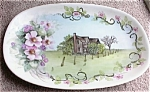 Click here to enlarge image and see more about item 092903PP: Handpainted HUTSCHENREUTHER Porcelain Tray