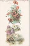 Click here to enlarge image and see more about item CP22: CATHERINE KLEIN~BOOK 4~VINTAGE PRINTS