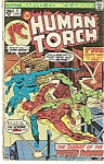 Click here to enlarge image and see more about item J0319: Human Torch - Marvel comics - July 1975 # 6