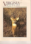 Virginia Wildlife - November 1991