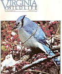 Click here to enlarge image and see more about item J3876D: Virginia Wildlife -  December 1982