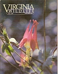 Virginia  Wildlife -  May 1985